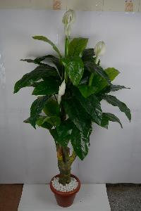 Artificial Plant Mfb108