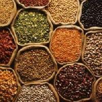 Organic Food Grains
