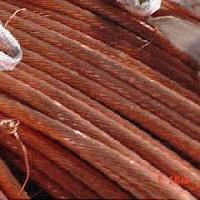 Copper Millberry
