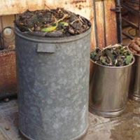Fruit Peels Waste Management System