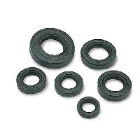 Wall Oil Seal Kit