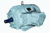 Flame Proof Motors Manufacturers Suppliers Exporters
