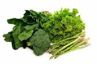 Green Leave Vegetables