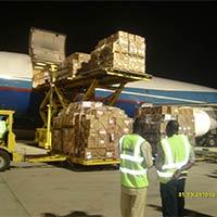Cargo Charter Services