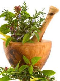 Raw Ayurvedic Plants