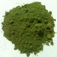 Dehydrated Green Mint Powder