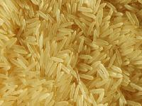 Indian Long Grain 1121 Super Kernal Golden Basmati Rice