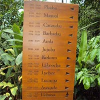 Engraved Wooden Sign Boards
