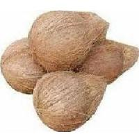 Natural Indian Coconut