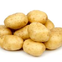 Potato Suppliers