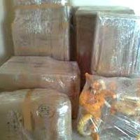Water Proof Packing Services