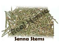 Senna Stems