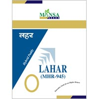 Hybrid Paddy Seeds (Lahar-945)