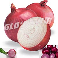 Fresh Red Onion