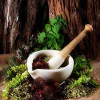 Psoriasis Ayurvedic Treatment Service