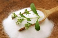 Stevia Extract White Powder