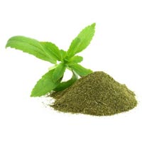 Stevia Leaves Powder