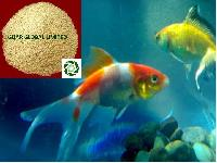 Guar Gum Churi Fish Meal