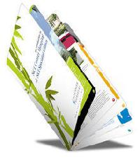 Brochure Design Printing Services