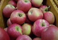 Fresh American Kashmir Apple