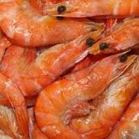 Fish Probiotics