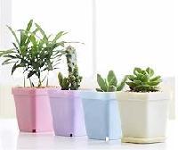 Designer Flower Pot