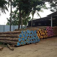 Teak Wood - Exporters and Wholesale Suppliers,  Tamil Nadu - Sri Vishnu Timber