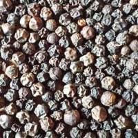 Black Pepper - Manufacturer, Exporters and Wholesale Suppliers,  Karnataka - E-earth Consumables Private Limited