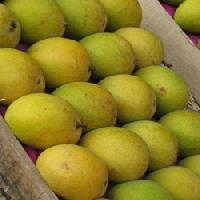 Fresh Indian Mango