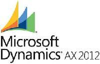 Microsoft Dynamic Erp Service