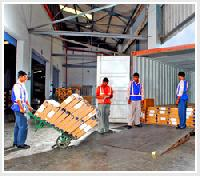 Container Freight Services
