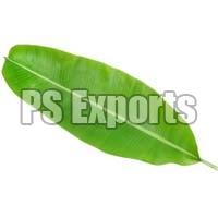 Ps Exports