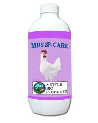 Mbs-sp-care