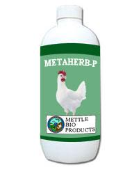 Meta Herb - P
