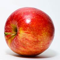 Indian Apple