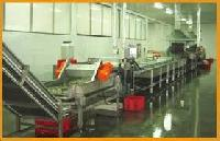 Frozen Vegetable Processing Plant