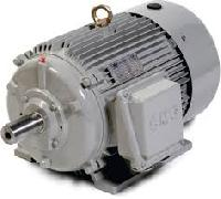 Ac Induction Motor Manufacturers Suppliers Exporters
