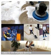 Carpet  Shampoo Services