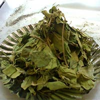 Gymnema Sylvestre Dried Leaves