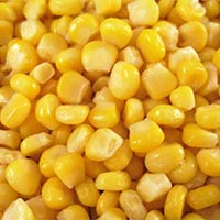 Sweet Corn - Exporters and Wholesale Suppliers,  Tamil Nadu - Teena Exports & Imports