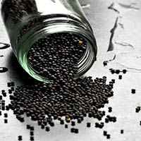 Oil Seeds