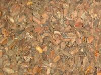 Mahua Seeds