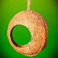 Coco fiber coco fiber pole coco fiber pots india for Whole coconut bird feeders