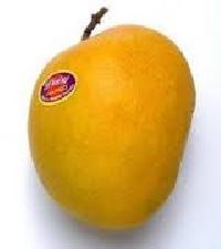 Premiun Quality Alphonso Mango