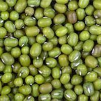 Green Gram Beans