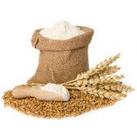 Wheat &rice