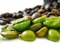 Coffee Bean Extract
