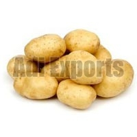 Fresh Potato - Manufacturer, Exporters and Wholesale Suppliers,  Maharashtra - Adi Exports