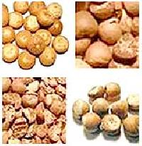 Dried Betel Nut (bn - 02)