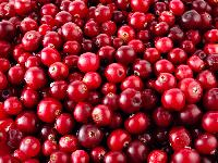 Dice Cranberry